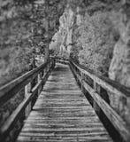 Pathway Stock Photography