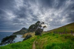 Pathway Near Fence and Cliff during Daytime Royalty Free Stock Photos