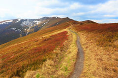 Pathway among nice meadow on mountain's slope Royalty Free Stock Photo