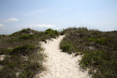 Pathway over sand dunes with a blue sky Royalty Free Stock Photo