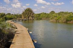Pathway over water. Walking bridge over a pool Royalty Free Stock Photography
