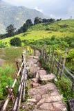 Pathway and paddy field, Himalayan foreland. Nepal Himalayas Stock Photo