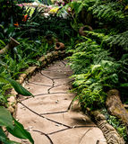 Pathway in the park Royalty Free Stock Photos