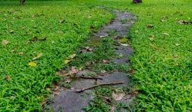 Pathway in park Stock Photo