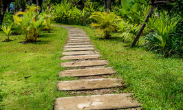 Pathway in park Stock Images