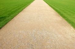 Pathway in the park with green grass. Background Stock Photo