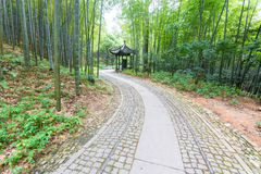 Pathway in the park Stock Photo