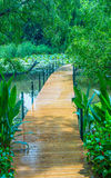 Pathway in park Royalty Free Stock Photo