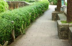 Pathway in the park. Out door background Royalty Free Stock Images
