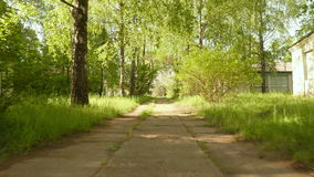 Pathway in the park. Smooth and slow steady cam shot. Clean and bright daytime stock video