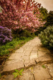Pathway in a park Royalty Free Stock Image