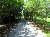 A pathway through a park. To a view in the distance Royalty Free Stock Photography