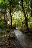 Pathway in a Park Victoria Falls, Zimbabwe in Spring Stock Photo