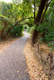 Pathway in a Park Victoria Falls, Zimbabwe in Spring Royalty Free Stock Image