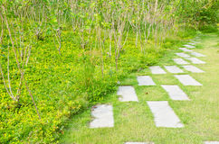 Pathway in the park. Royalty Free Stock Image