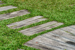 Pathway in the park Stock Photography