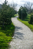 Pathway in a Peaceful Green Garden royalty free stock photo