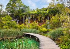 Pathway in Plitvice lakes park at Croatia. Travel background Stock Photos