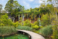 Pathway in Plitvice lakes park at Croatia Royalty Free Stock Photography
