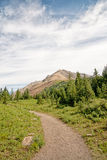 Pathway in the Rocky Mountains Stock Photo