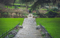 Pathway in a Rookery Royalty Free Stock Image