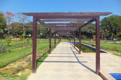 Pathway in Rose Garden, New Delhi. India Royalty Free Stock Images