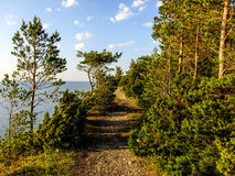 Pathway in Saaremaa. Amazing Pathway over the Cliff in Saaremaa Island Stock Images