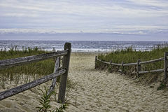 Pathway through the sand dunes Royalty Free Stock Photography