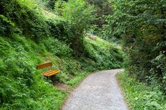 Pathway with Sitting Bank for Relaxing. Natural park with path way, meadow area and green big trees with sitting bank Stock Photography
