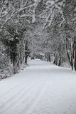 Pathway in snowy woodland Stock Images