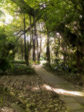 Pathway in St George's Park. A view of a pathway in St George's Park in Royalty Free Stock Image