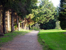 Pathway, Stirling University Stock Image