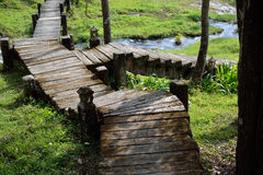 Pathway stone stair Stock Photography