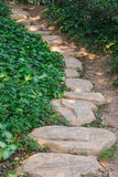 Pathway with stones Stock Image