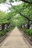 Pathway temple Stock Photo