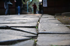 The pathway. To asian temple Stock Images