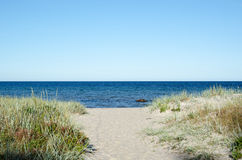 Pathway to the beach of Baltic Sea at the swedish island Oland. Pathway to the sand beach at a bay of of Baltic Sea at the swedish island Oland royalty free stock photography
