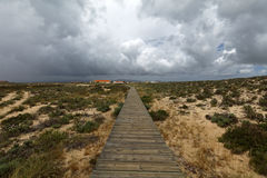 Pathway to the beach on Culatra Island in Ria Formosa, Portugal Stock Photography