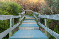 Pathway To The Beach and Ocean Stock Images