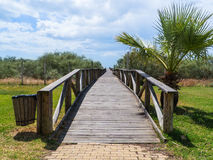 Pathway to the beach. Wooden pathway to a beach in Spain Royalty Free Stock Photography