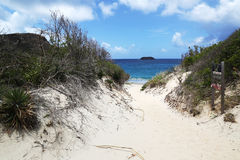 Pathway to famous Saline beach, St. Barths, French West Indies Royalty Free Stock Images