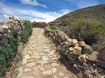 Pathway to heaven. Rocky pathway with bush vegetation Stock Image