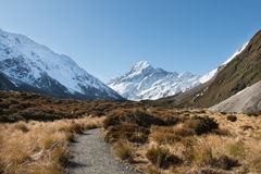 Pathway to mt Cook, Aoraki National Park Royalty Free Stock Photography