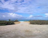 Pathway to Paradise. Sand path leads to calm ocean beach Royalty Free Stock Photos