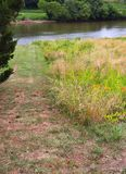 Pathway to River Greenery and Daylilies stock image