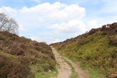 Pathway to the top of the moor. A public footpath leading to the top of the moor with covered in heather that is yet to flower with blue sky and light cloud Stock Photos