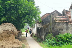 A pathway to village in a rural area in the countryside of the North of Vietnam Stock Photo