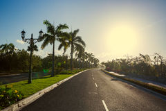 Pathway with tropical nature toward luxury resort in Punta Cana, Dominican Republic royalty free stock images
