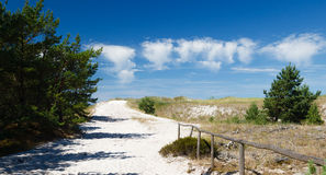 Pathway trough the dunes on Baltic Coast, Poland. As waves and wind carry sand inland the dunes slowly move, at a speed of 3 to 10 metres per year. Some dunes Stock Photo