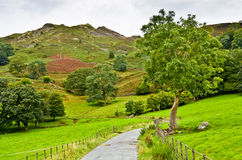 Pathway under Loughrigg Fell. A winding pathway under Loughrigg Fell in Langdale, the English Lake Disrict Stock Photo